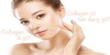 [Tư vấn] Collagen là gì ? Làm thể nào để bổ sung collagen